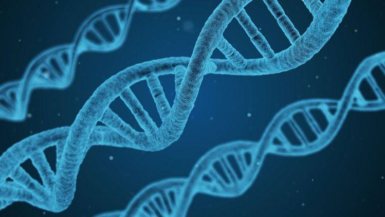 Gendiagnostik in der ästhetischen Medizin